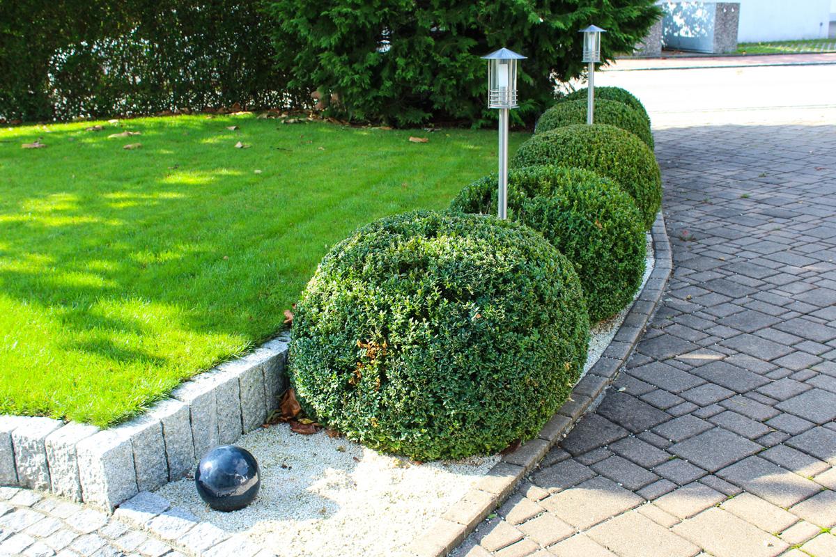 Evergreen Gartenbau pgl obermeitingen pflaster garten landschaftsbau